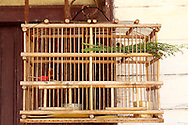 Bird cage in San Antonio de Rio Blanco, Mayabeque, Cuba.