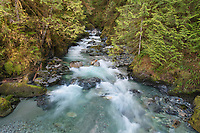 Noisy Creek, North Cascades Washington