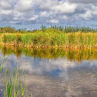 Harrold Pond West New Providence
