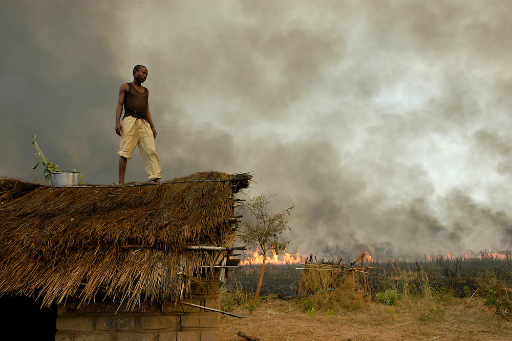 A man attempts to protect the thatched roof of his home as the bush burns around his village in the south eastern province of Katanga. Locals claim that Mai Mai militias hiding in the mountains set the countryside ablaze to prevent government forces from using the bush as cover for their attacks against them. Hunters also use the fires to drive animals into the open. The region has been severely effected by fighting between government forces and Mai Mai militias. Over 1200 people die everyday in the RD Congo, largely due to preventable diseases such as malaria, malnutrition and tuberculosis, a direct consequence of the country's conflict and decades of kleptocratic dictatorship..Kina, Democratic Republic of Congo. 17/06/2006.