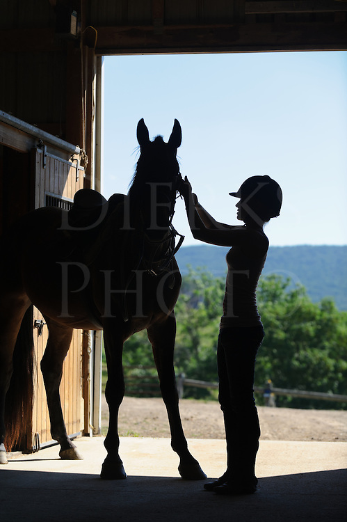Girl preparing a horse for horseback riding silhouetted against the open barn door of the stable, wearing a safety helmet and checking the bridle.