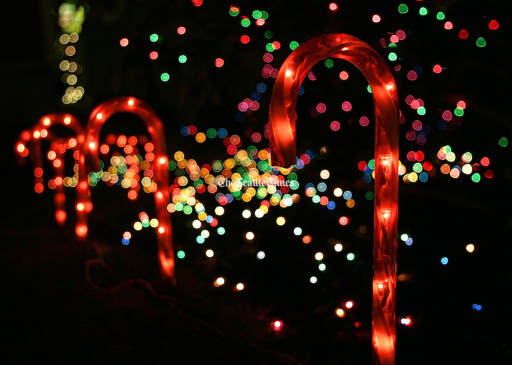 Christmas lights bring holiday cheer to the darkness.<br />