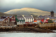 Dingle harbour, County Kerry, on the west coast of Ireland, home of the famed dolphin Fungi..In 1984, the lone dolphin was observed escorting the fishing boats. The fishermen named him Fungi. Within months, he had become such a fixture that local officials declared him a permanent resident. .For more than 20 years, Fungi has stayed in the harbour and befriending humans, becoming one of Ireland's top attractions..Every summer, Dingle town?s 3,000 inhabitants are overrun by tourists, who have come to see Fungi on boat trips..Fungi, a male bottlenose, is around 30 years old. He weighs about 250 kilos and is about four metres in length.