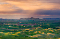 Evening light bathing the Palouse region of the Inland Empire of Washington