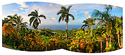 Panorama from GeeJam - Port Antonio