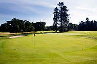 HOOG SOEREN -  green hole 5 / 14.   Veluwse Golf Club bestaat 60 jaar. COPYRIGHT KOEN SUYK