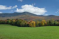 Pasture, Green Mountains, Vermont