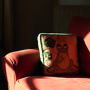 The frog pillow my maternal mother made for my father. Boston, MA, 2008.