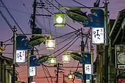 Streetlights with fish banners at dusk in Nachikatsuura harbor, Kii Peninsula, Higashimuro District, Wakayama Prefecture, Japan.