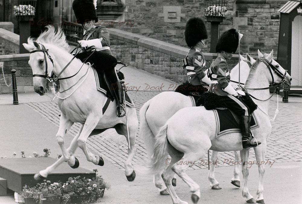spooked horse, Edinburgh Military Tattoo