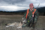 Montana Wolf Hunt: Montana Elk Hunter takes wolf while hunting elk in the Bitterroot Mountains, Montana.