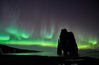 Aurora Borealis, Northern Lights dancing over Hvítserkur Sea Stack at Húnafjörður, Northwest Iceland.