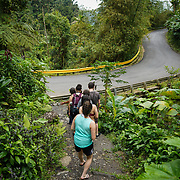 RIO GRANDE, PUERTO RICO -- FEBRUARY 1, 2019: <br /> Visitors to El Yunque National Rain Forest enjoy the walk the trail from the Quebrada Juan Diego (Juan Diego Creek). A few of the rain forest's popular trails and attractions are still not open to the public more that one year after Hurricane Maria's path through Puerto Rico.<br /> (Photo by Angel Valentin)