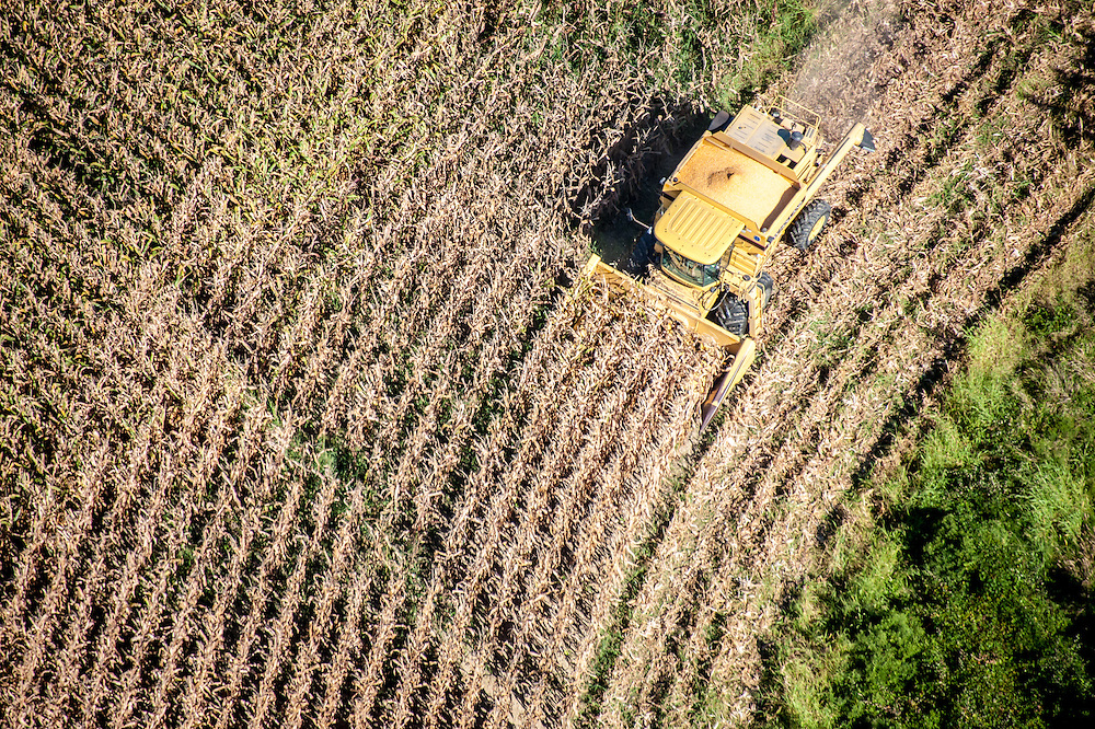 Aerials of Yellow combine harvesting corn near St. Michaels, Maryland