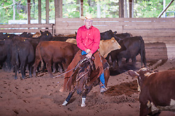 September 23, 2017 - Minshall Farm Cutting 5, held at Minshall Farms, Hillsburgh Ontario. The event was put on by the Ontario Cutting Horse Association. Riding in the Non-Pro Class is Shawn Mishall on Wild Little Cat owned by the rider.