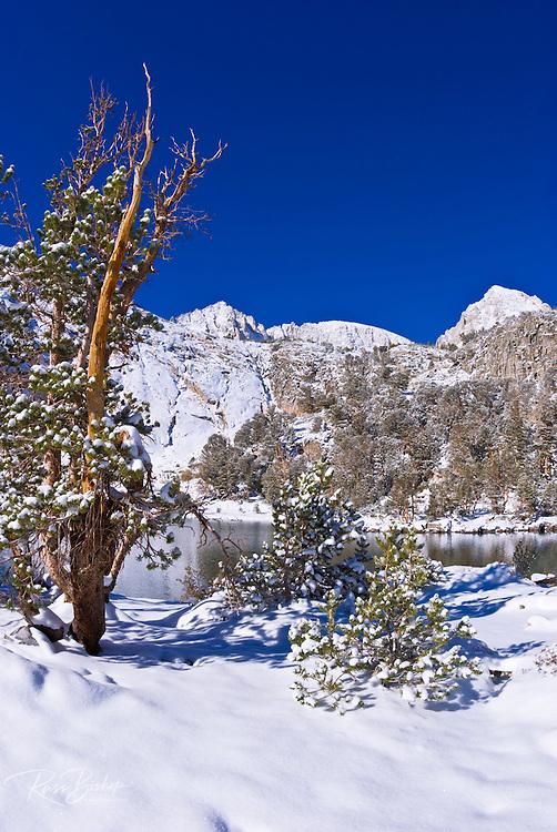 Fresh snow on Mount Abbot and Gem Lake after a winter storm, John Muir Wilderness, Sierra Nevada Mountains, California