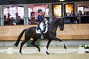 Wendy van Diessen van den Boogaard - Evanel's Blackie W<br /> KNHS Indoorkampioenschappen 2017<br /> © DigiShots