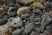Interesting mixture of volcanic rocks along the shore of James Bay, Santiago Island, Galapagos Archipelago - Ecuador.