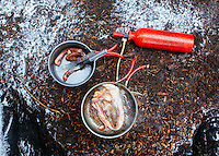 Cooking bacon while van camping near Mt Rainier, WA.