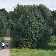Nederland Rotterdam Deelgemeente prins alexander 08-09-2008 20080908 Foto: David Rozing ..Kralingse veer, kralingseveer, productiebos naast wijk .Deelgemeente Prins Alexander is het op 1 na diepst / laag gelegen gebied in Nederland, het laagste punt in de deelgemeent is  6,67 meter beneden NAP. Prins Alexander, second deepest area in the Netherlands, deepest point in this area, below sealevel: - 6,67m NAP..Foto: David Rozing