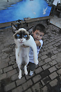 Boy holding a cat at an orphanage in Santa Cruz, Bolivia
