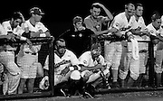 USC players and personnel watch the tense moments in the final innings of game two of the 2010 College World Series finals between South Carolina and UCLA at Rosenblatt Stadium in Omaha, Neb, Tuesday, June 29, 2010.