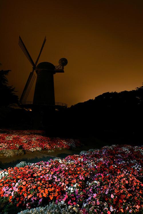 Queen Wilhelmina Tulip Garden and the Dutch Windmill12:28 am 8-11-05