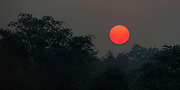 Sunrise in Tadoba NP, India.