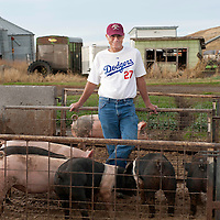 Lindy Hinkelman has been raising pigs for decades on his family farm in Greencreek, Idaho. He has won fantasy baseball league two years in a row from his home. He is wearing the number of his number one draft pick, Matt Kemp. (Rajah Bose for the New York Times)