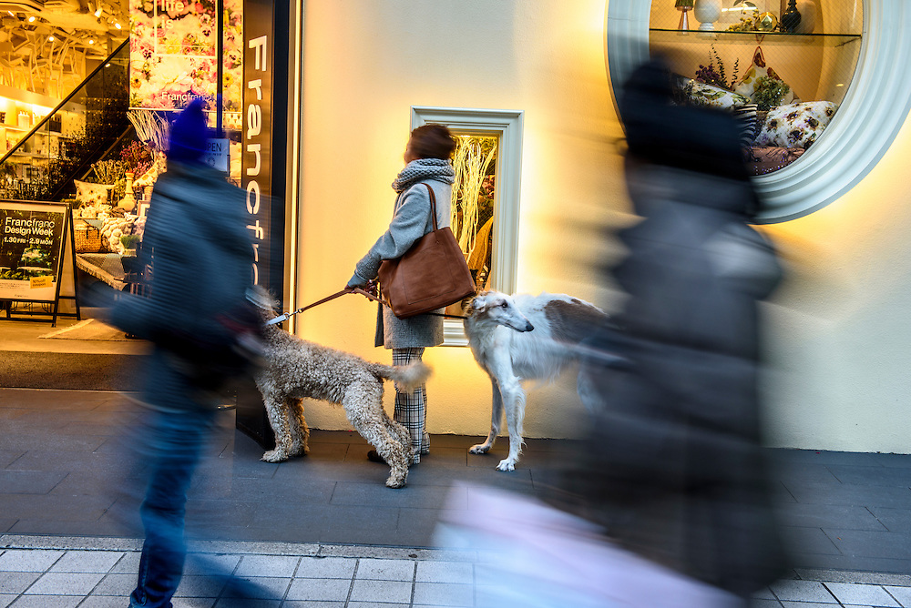 A woman waits outside a store with her dogs in Sakae, the central shopping district in Nagoya, Japan.