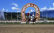 Un jinete corre en la pista de carreras del Hipódromo de La Rinconada.  A jockey runs    in the racetrack. Caracas, 2000.  (Ramón Lepage/Orinoquiaphoto)