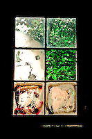Old carriage window  house filters afternoon sun in Washington Grove, MD.  Copyright 2008 Reid McNally.