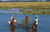 Nepal. Region du Terai.  Ethnie Tharu. Pecheurs des rizieres // Nepal. Terai area. Tharu Ethnic group. Fisher of the rice field.