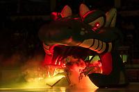 KELOWNA, CANADA - NOVEMBER 25: Roman Basran #30 of the Kelowna Rockets enters the ice through the dragon against the Medicine Hat Tigers on November 25, 2017 at Prospera Place in Kelowna, British Columbia, Canada.  (Photo by Marissa Baecker/Shoot the Breeze)  *** Local Caption ***