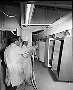 Pye Factory,fridge assembly line..1971..15.04.1971..04.15.1971..15th April 1971..The Pye factory which manufactured electrical appliances closed its doors in 1985. At the peak it Pye employed 1200 people and was the largest employer in the Dundrum area. Dundrum bowl was built on the Pye site when the factory closed, it too had its problems and closed in the early 90s due to flooding. on the site now stands the Dundrum Shopping centre which is now the centrepoint of Dundrum town centre..Image shows fridge casings moving along the assembly line. The units are spray coated with the required finish.The supervisor is seen instructing the spray painter.
