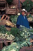 Wholesaler at Corobastos Market, Bogota