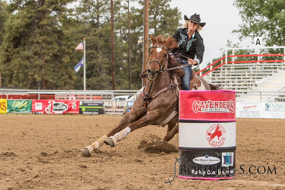 Renee Rownd makes her barrel racing run during slack at the Elizabeth Stampede on Sunday, June 3, 2018.