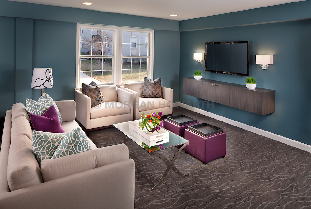 108 S. Courthouse Road Arlington, VA Myerton Condominium JBG designer Jeff Akseizer Home Living Room