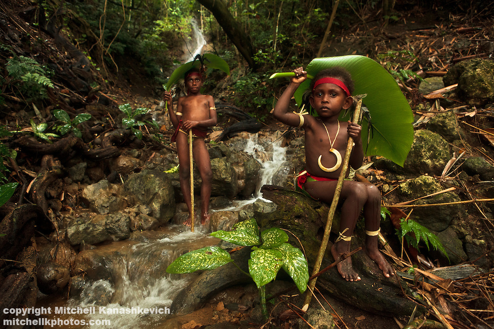 Traditional Ni Vanuatu children in front of a waterfall using large palm leaves for umbrellas. Near village of Labo, South West Bay, Malekula