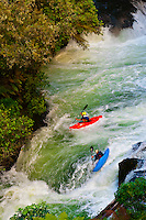 Kayaking, Kaituna RIver, near Rotorua, north island, New Zealand