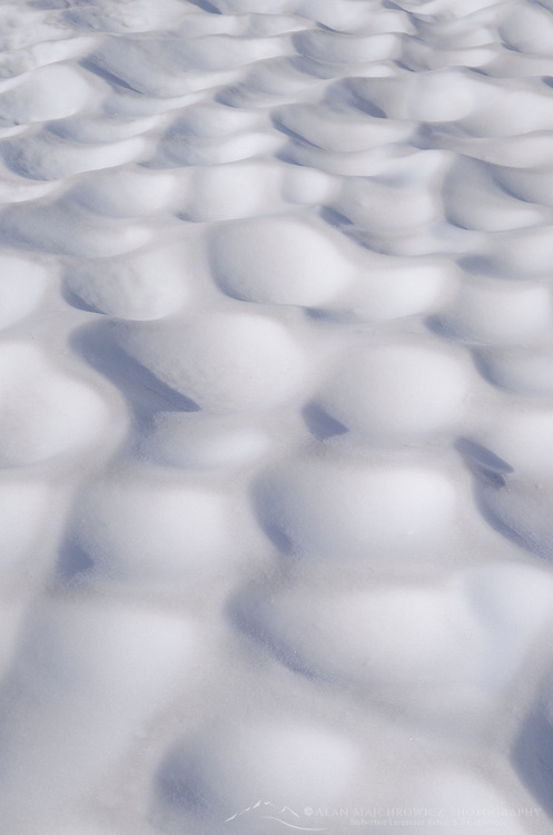 Sun cups in snowfield