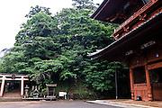 Daimon Gate.