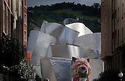 Guggenheim Museum in Bilbao.