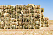 stack of rectangular hay bales in a field near Donald, Victoria, Australia