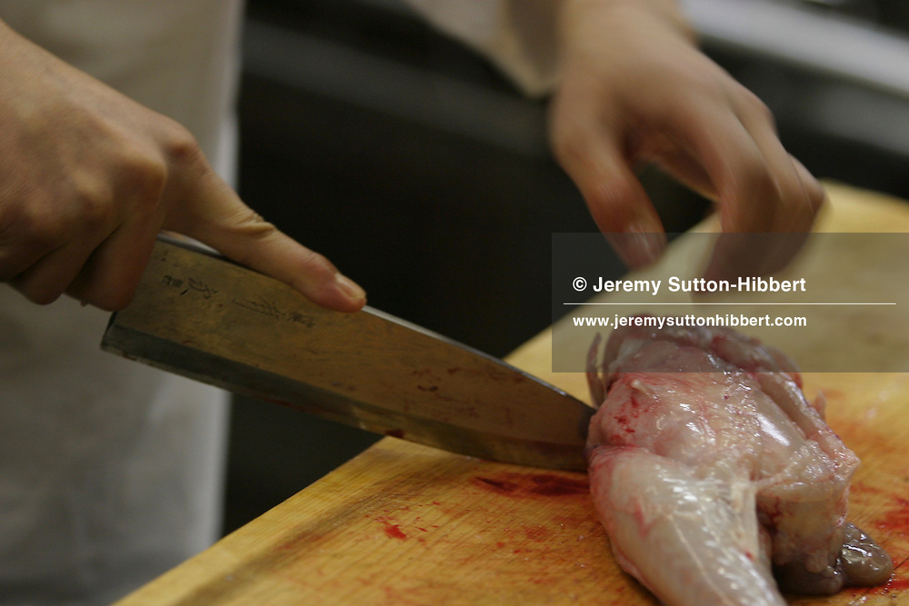 The preparation of 'fugu' (blowfish) fish,  in the 'Wa No Fu Club', a 'fugu' speciality restaurant. 'Fugu' can only be served in restaurants with a license for the preparation of the poisonous fish. Blowfish consumption is banned within the EU.