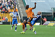 Bruno Saltor challenges Benik Afobe during the Sky Bet Championship match between Wolverhampton Wanderers and Brighton and Hove Albion at Molineux, Wolverhampton, England on 19 September 2015. Photo by Alan Franklin.