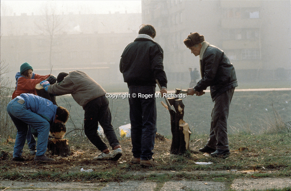 Sarajevo residents salvage the remains of trees that have been cut down for use as fuel for cooking and heating during the Serb siege of the city, December 1992. During the first winter of the siege most of Sarajevo's parks and tree-lined boulevards were cut down by desperate citizens. (Photo by Roger Richards)
