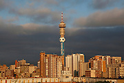 Hillbrow and the Telkom Tower.  Johannesburg. South Africa.Picture by Zute Lightfoot.