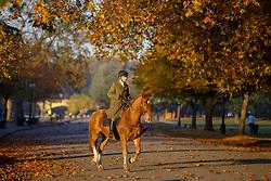 November 2, 2016 - London, London, UK - London, UK. People ride horses near the Serpentine pond in Hyde Park, London on Wednesday, 2 November 2016. (Credit Image: © Tolga Akmen/London News Pictures via ZUMA Wire)