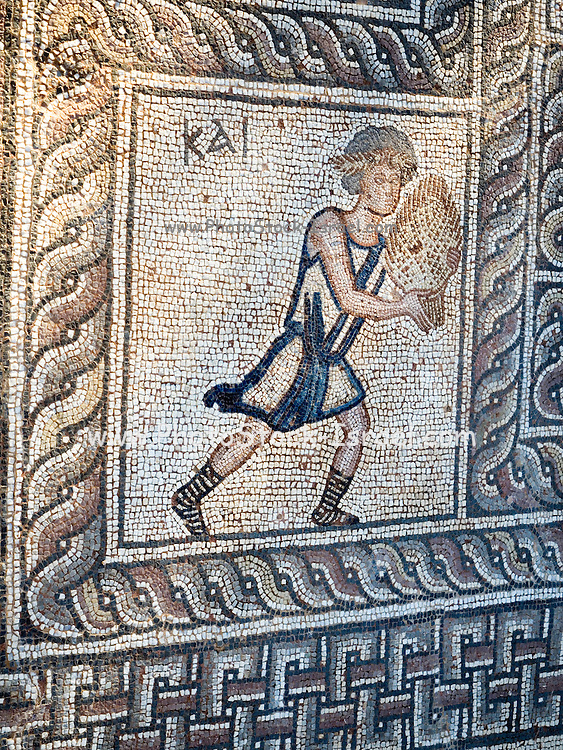 Figure carrying offering, mosaic floor, 5th century AD Early Christian, from basilica, Delphi, Greece (detail)